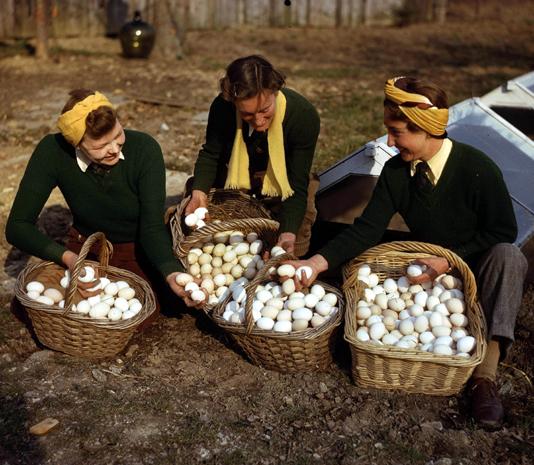 British Wartime Cooking, Eating